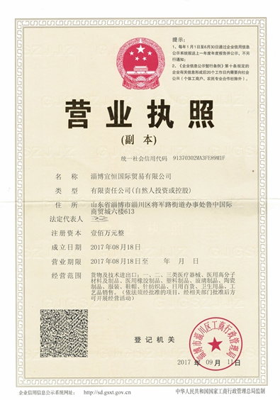 Business license-Econst Company's